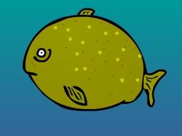 Kugelfisch.jpg