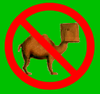 No-Camel-Icon.jpg