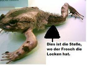 Froschlocken.jpg