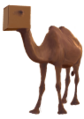 Camel in a box klein.png