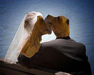 Kronfis Hochzeit.jpg