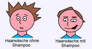 Shampoo-Haarwaesche.jpg