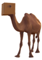 Camel in a box.png