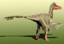 Dromaedosaurus.jpg