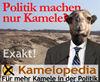Kamelpolitiker.jpg
