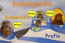 Kamelopedia - Kamelisch für Profis.jpg