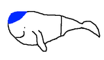 Berufswal.png